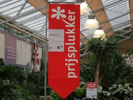 Do It Pin Banner Intratuin